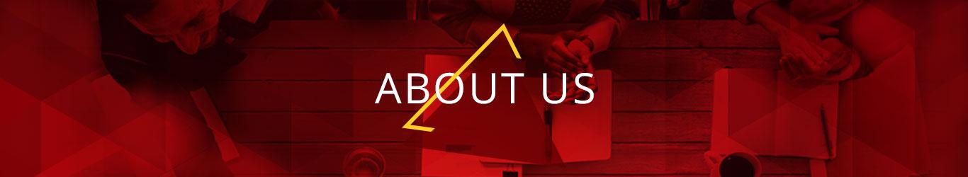 About Us - HPL Electric & Power Pvt  Ltd